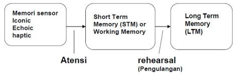model struktur memori manusia
